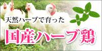 天然ハーブで育った国産ハーブ鶏