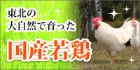東北の大自然で育った国産若鶏